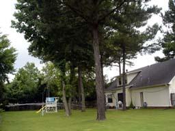 じぃちゃんの家の庭