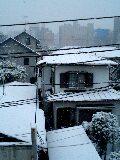 snow in Atsugi