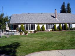 庭から眺める家
