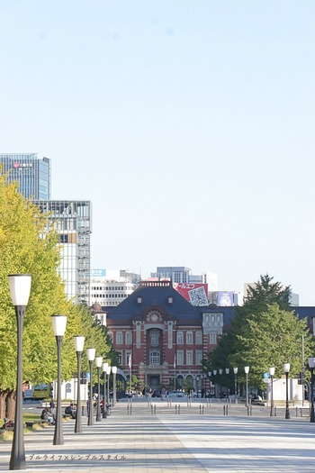 IMG_8043a