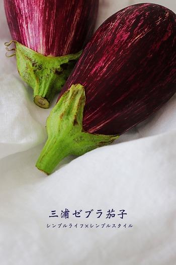 IMG_9205あ
