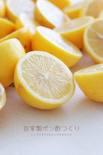 自家製レモンぽん酢