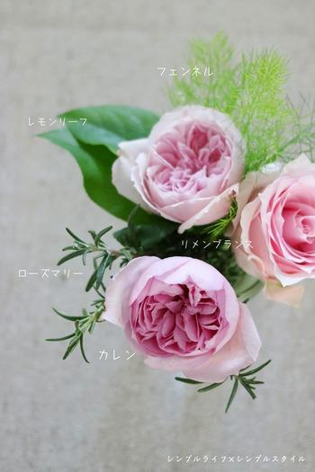IMG_2941あ