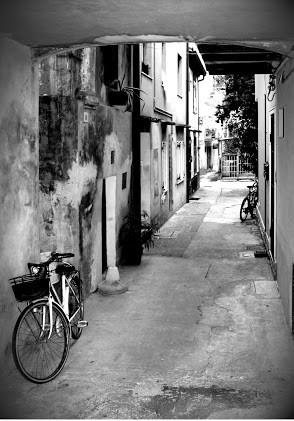 италия 2011 238