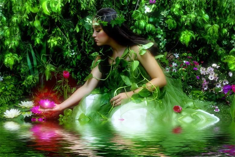lotusgirl