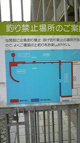 2db14f95.jpg