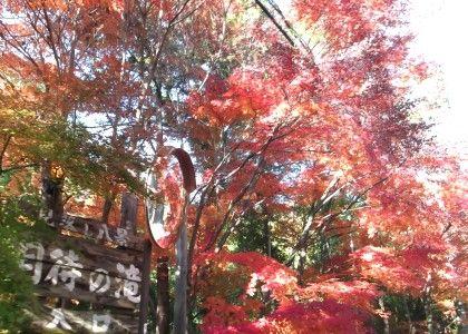 11月22日月待の滝2