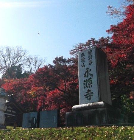 11月16日永源寺8