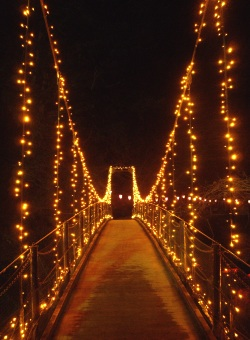 冬の滝紀行吊り橋