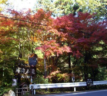 20101111月待の滝1