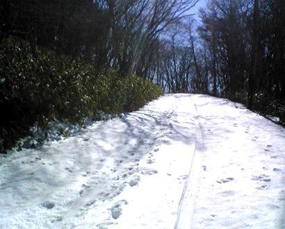 20110219八溝山頂付近