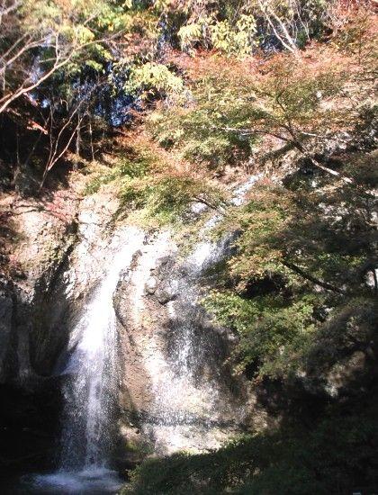 11月22日月待の滝1