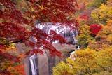 成島晴男「滝と紅葉のコラボ」