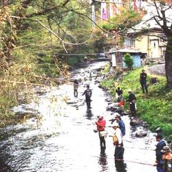 渓流釣り大会