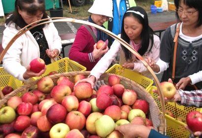 りんご祭り5