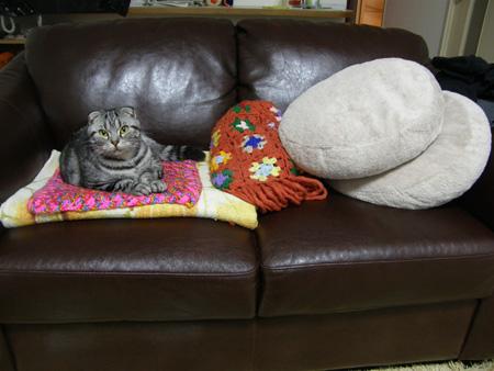 ソファーで。