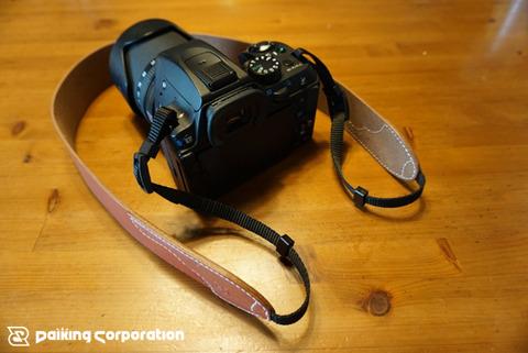 ノーマルwithカメラ1