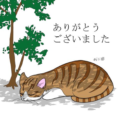 ありがとうございました(トラ猫)