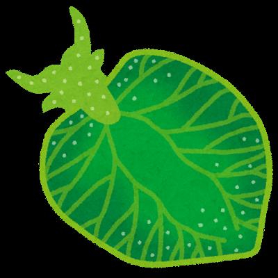 光合成をするウミウシ