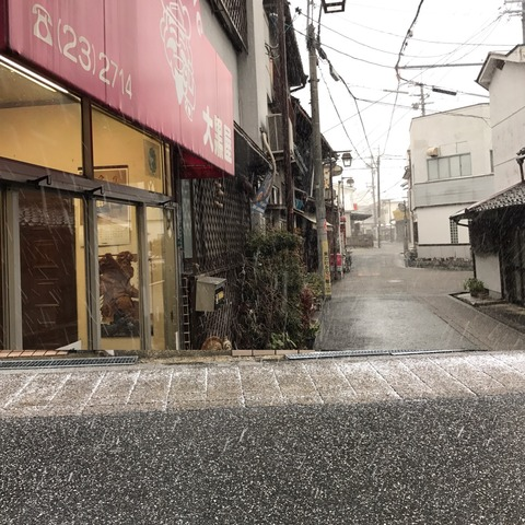 週末は積もるかなぁ。。。寺内町の雪景色楽しみ♬寒いの嫌だけど