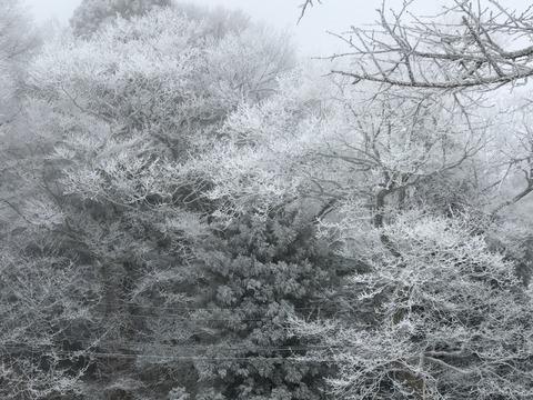 危うくば…冬の登山!雪山登山はナメてはいけない