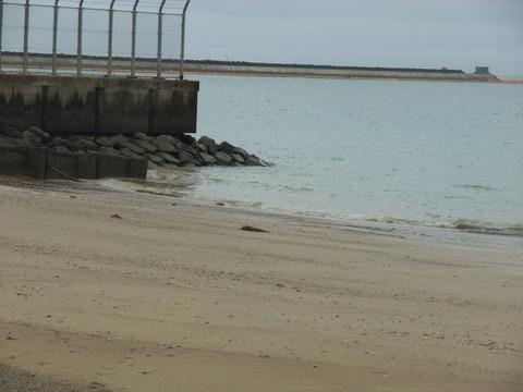 ⑬ DSCF2698 護岸を見る