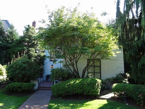 アメリカの家の庭先(3)