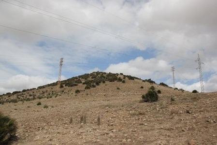 南欧のうさぎ山(1)