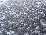 融雪比較写真左