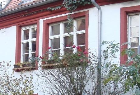 育てる窓辺(3)
