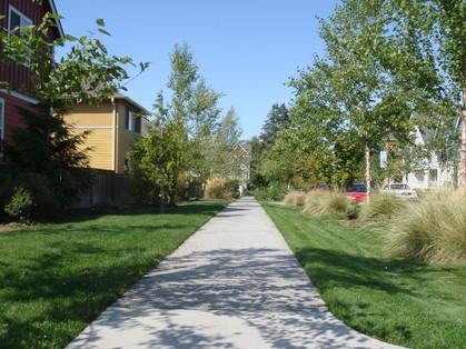 住宅地の歩道