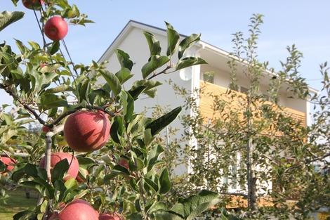 りんご畑の家 (2)