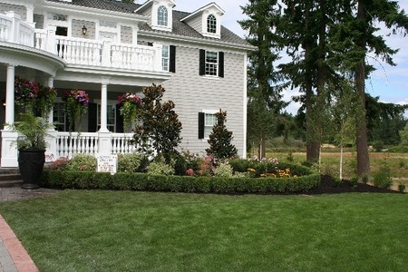 アメリカの家の芝 (1)