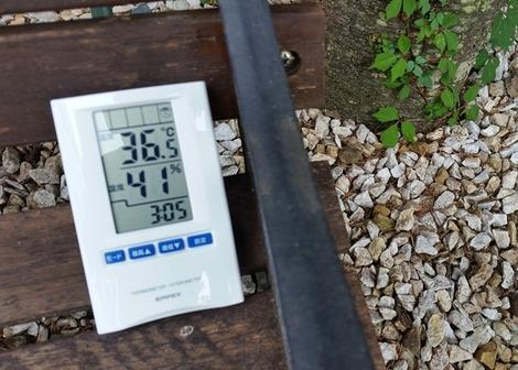 岩手県の温度