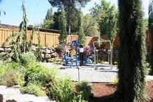 アメリカ住宅の庭先(8)