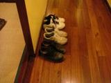 後ろ?向きな靴たち
