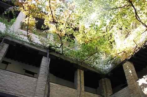 南欧の中庭 (5)