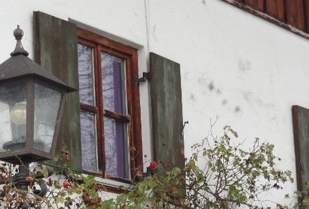 育てる窓辺 (2)
