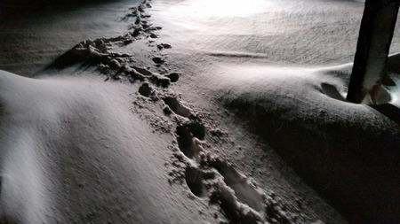 岩手の暴風雪 (2)