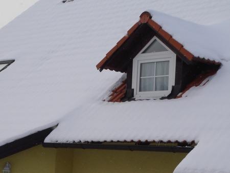 北欧の小屋根