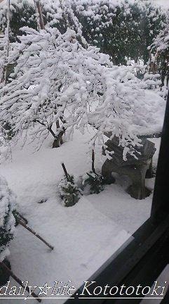 雪DSC_1123