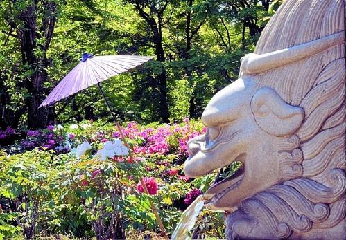 日本庭園の見守り