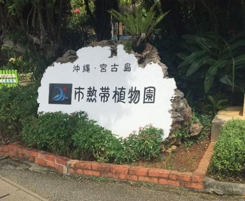 #年-宮古島15564640