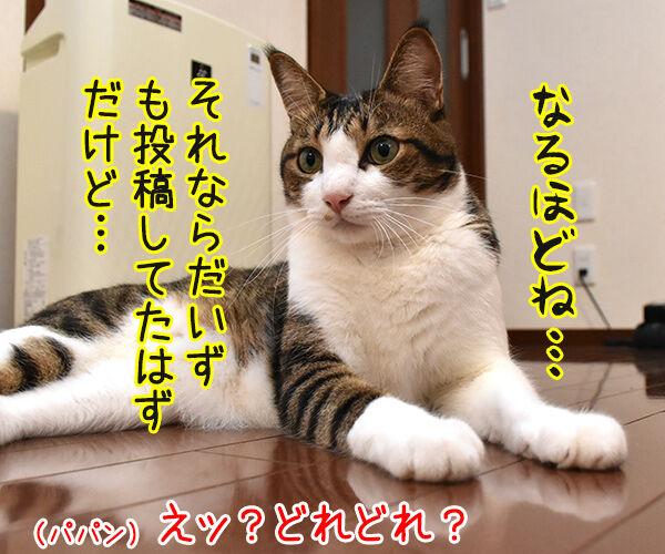イケメン俳優の竹内涼真さんが匂わせで熱愛発覚なんですってッ 猫の写真で4コマ漫画 3コマ目ッ