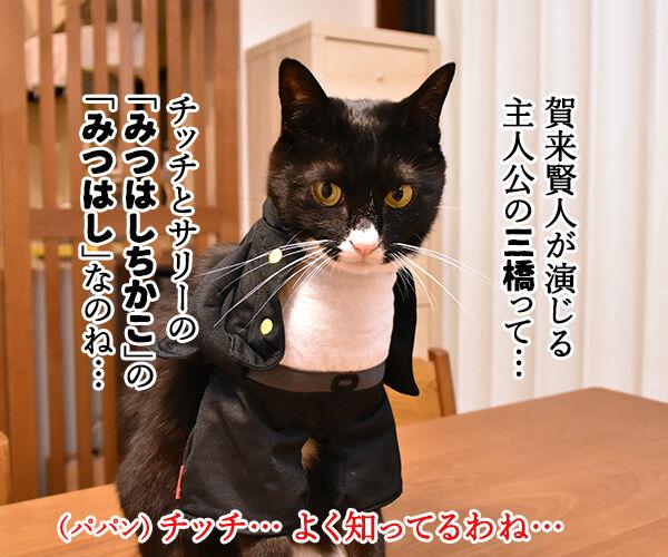 『今日から俺は!!』の三橋って… 猫の写真で4コマ漫画 2コマ目ッ