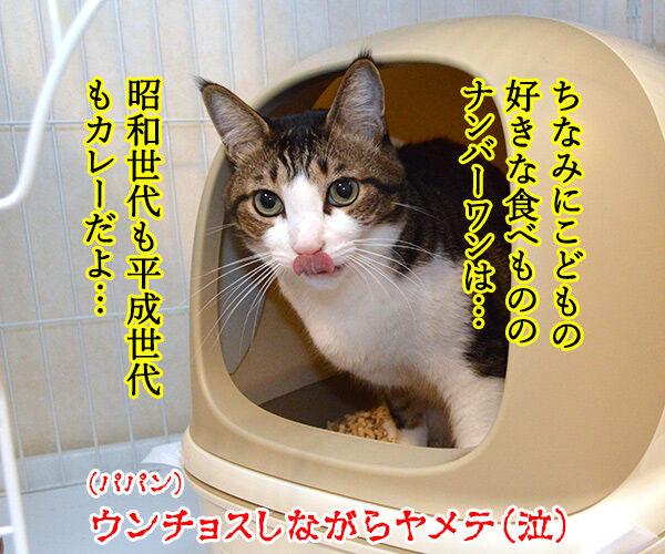 こどもの日だからウンチョスブリブリ 猫の写真で4コマ漫画 4コマ目ッ