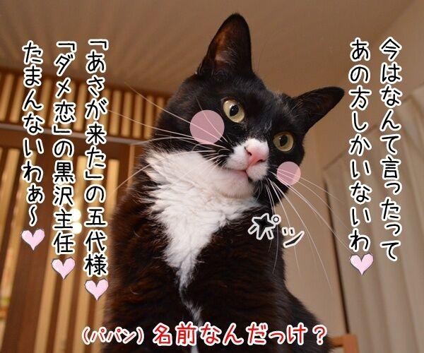 福山雅治宅に不審な女性が侵入ですってッ 猫の写真で4コマ漫画 3コマ目ッ
