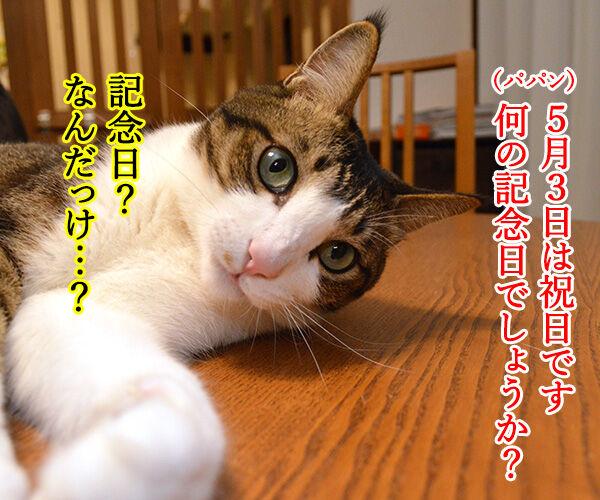 きょうは何の記念日でしょうか? 猫の写真で4コマ漫画 1コマ目ッ