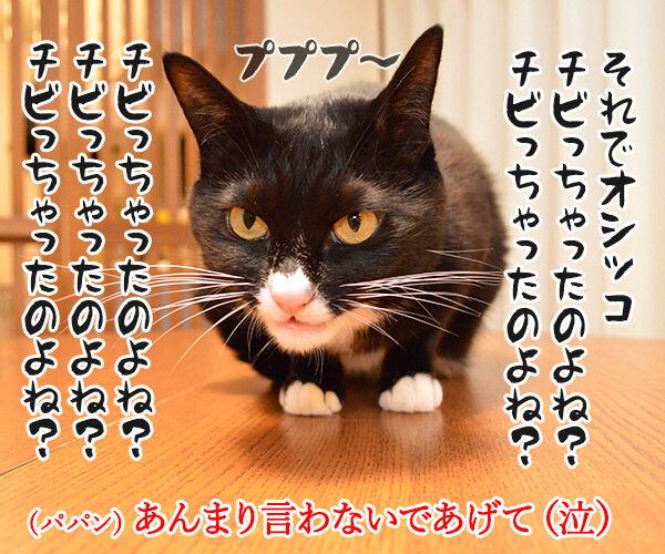 動物病院といえば想い出す 猫の写真で4コマ漫画 3コマ目ッ