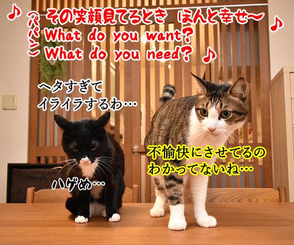 NiziUの『Make you happy』を唄うのよッ 猫の写真で4コマ漫画 3コマ目ッ